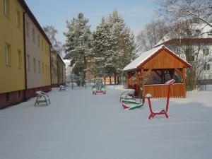 zimni1